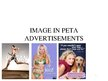 Referāts 'Image in PETA Advertisements', 27.