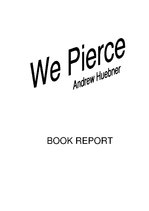 "Konspekts 'Report about Book ""We pierce""', 1."