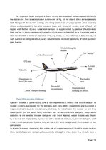 Diplomdarbs 'Role of Band Strategy Development in European Airline Industry', 34.