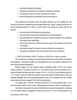 Referāts 'Analytical Report of an Interview of a Chief Executive Officer of Creative Indus', 8.